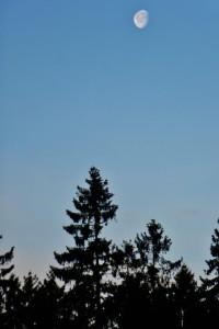 Rothaarsteig Mond