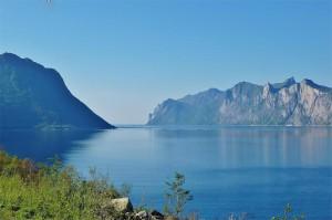 Senja Mefjord